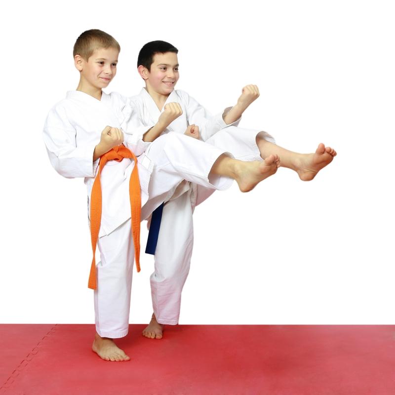 Original source: http://karateatlanta.com/wp-content/uploads/2015/12/Karate-Atlanta_July_What-Is-the-Best-Martial-Art-for-Kids_Image-1.jpg