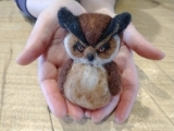 Needle Felt a Great Horned Owl: Live Online