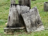 Back to the Cemetery! - Live Online