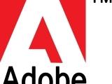 Adobe for Beginners