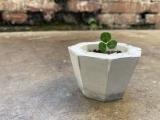 Concrete Planter Workshop