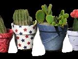 Patriotic Flower Pot-Virtual