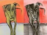 Pet Portraits Through Screen Monoprint