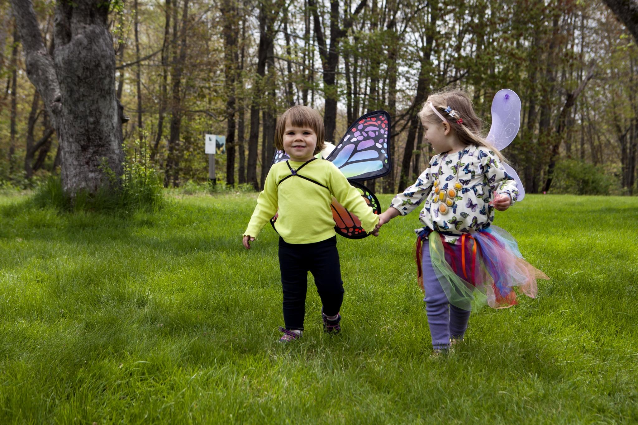 Pollinator Parade and Festival