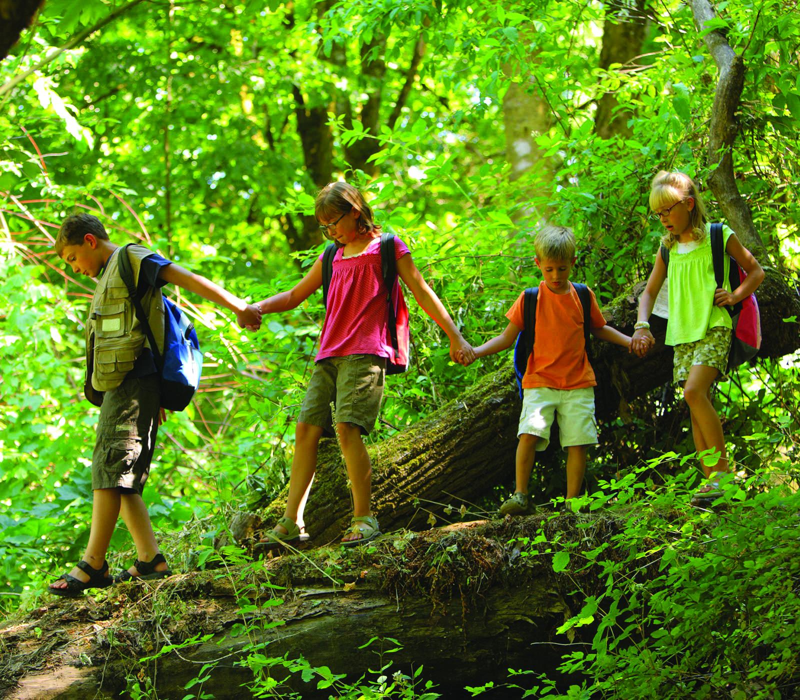 Fields Pond Summer Day Camp