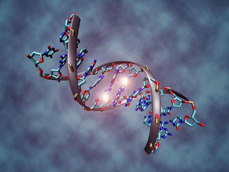 Original source: https://upload.wikimedia.org/wikipedia/commons/thumb/8/80/DNA_methylation.jpg/1200px-DNA_methylation.jpg