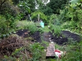 Introduction to Permaculture W20