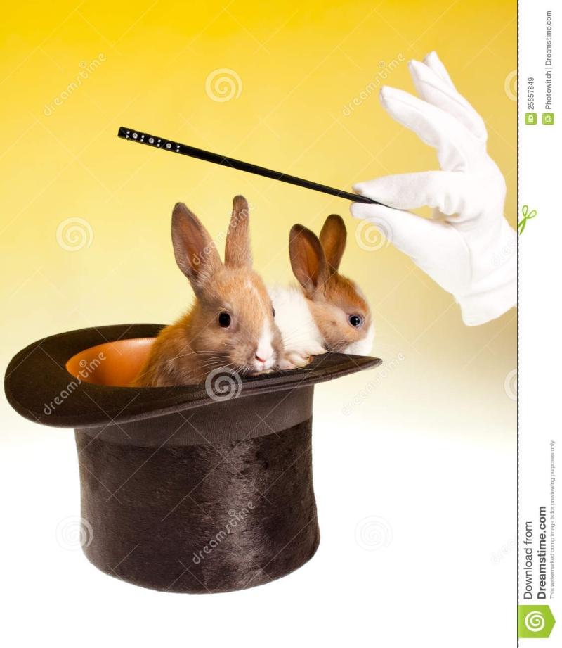 Original source: https://thumbs.dreamstime.com/z/rabbit-magic-trick-top-hat-25657849.jpg