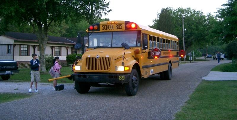 Original source: https://upload.wikimedia.org/wikipedia/commons/3/3d/Children_about_to_board_the_school_bus_%28Thibodaux%2C_Louisiana%29.jpg