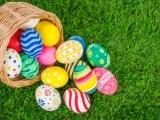 CMT: Egg Hunt