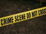 Family Forensics Fingerprint Fun