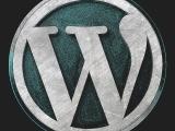 WEBSITE DESIGN & MANAGEMENT WITH WORDPRESS INF233