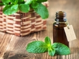 Make & Take Essential Oils: Holiday Gifts