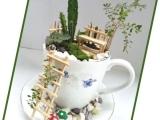 Tea Cup Fairy Garden-Virtual class