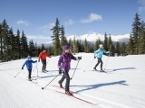 Cross Country Skiing - Introduction