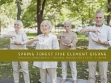 Spring Forest Five Element Qigong