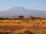 It Takes A Village: Journey to the Rooftop of Africa, a Kilimanjaro Trek