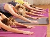 Yoga for Back Health - Lincolnville