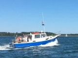 Birds of Casco Bay Boat Trip