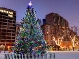 Boston Christmas Festival Trip