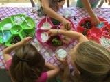 9/23/2017 Mom & Me Fairy Garden Terrariums Crafting Class Session #1
