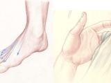 Drawing Hands & Feet Workshop (ONLINE) DR 605HF_ON