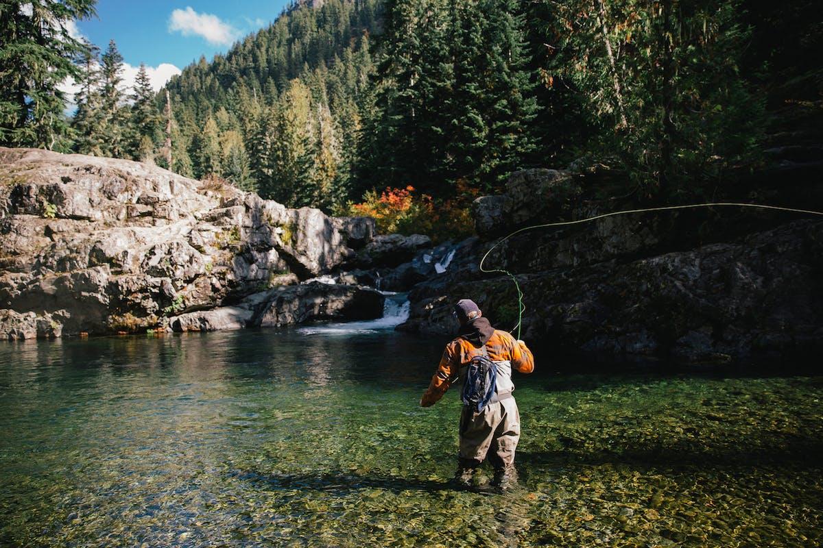 Beginner Fly Fishing