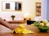 Natural Furniture Polish/Cleaner