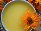Calendula Salve and Lip Balm from Medicinal Plants