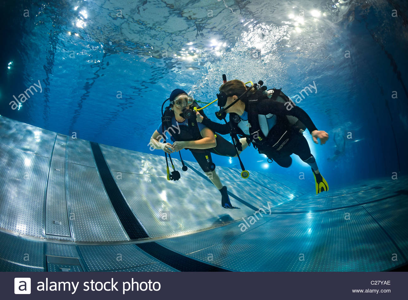 PADI TRY SCUBA DIVING EXPERIENCE (spring)