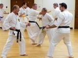 Beginner Adult Karate