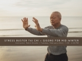 Stress Buster Tai Chi and Qigong for Mid-Winter!