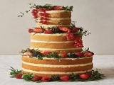 Cake Decorating: Naked Wedding Cake (Holiday Themed)