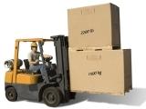 Forklift Training (WRKFR 338)