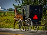 Know How Tours - Amish Brown Bag Tour