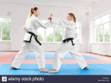 Introduction to Martial Arts