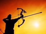 Archery Safety/Online
