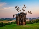 Polish Language for Beginners (Online)