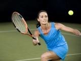 Adult Beginner Tennis - Session 1