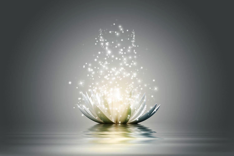Meditation IIA