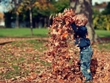 Fall Acorn Adventures At Home