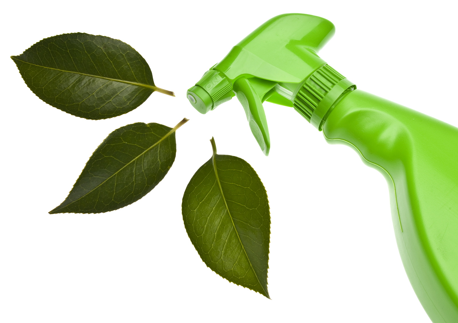 Green Cleaning