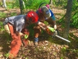 Chain Saw Safety for Women Fall Session 2