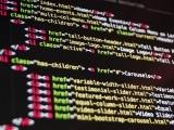 Oracle SQL and PL/SQL + Python Developer + Java Programmer