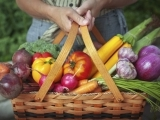 Grow Your Own Organic Garden! Maine Organic Farmers & Gardeners Association