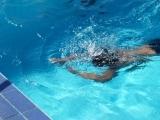 Open Swim Punch Pass