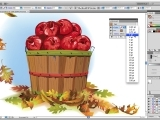 Adobe Illustrator ONLINE