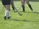 Adult Pickup Field Hockey