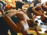 Yoga For Everyone - Single Session
