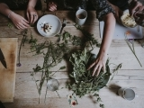 Intro to Herbs